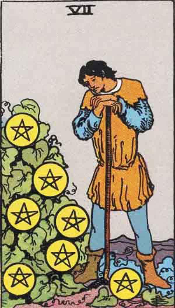 The Seven of Pentacles tarot card