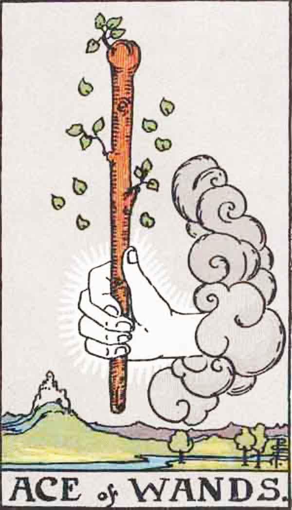 The Ace of Wands tarot card